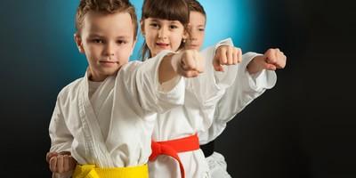 Image result for crocodile martial arts adelaide kids